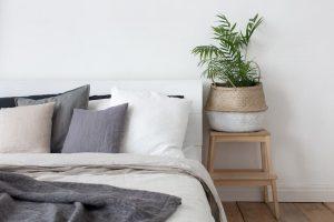 decorar plantas interior 3